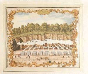 Antigua litografía de las canteras de Solnhofen