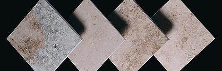 Paleta de grises de Solnhofen
