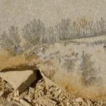 Piedra Solnhofen con dendritas